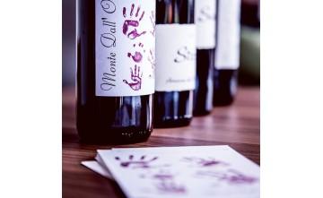 La bellezza del vino     Di Francesco Falcone